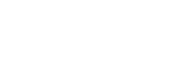Fleur de Liz
